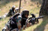 पंजाब के रास्ते घुसपैठ की कोशिश, BSF ने 2 आतंकी मार गिराए