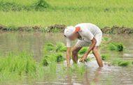 किसानों का 50 हजार रुपए तक का कर्ज माफ, आंदोलन खत्म